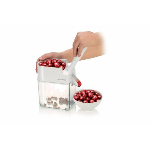 Tescoma HANDY cseresznyemagozó