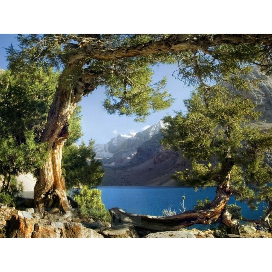 Fototapeta príroda 270 x 360 cm, Hornschuch