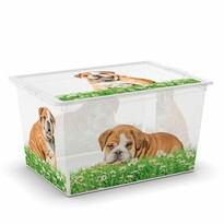 KIS Dekoračný úložný box C-Box Puppy & Kitten XL, 50 l
