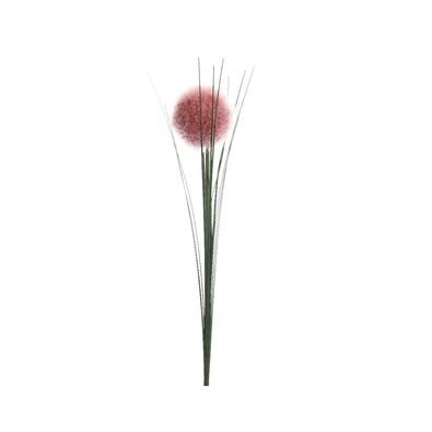 Ceapă decorativă roz, 66 cm