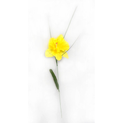 Umělá květina narcis 12 ks