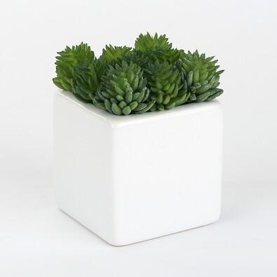 ASA Selection umělá květina v květináči succulents 11648