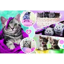 Trefl Puzzle Pisici, 160 piese