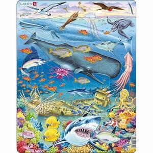 Larsen Puzzle Velrybí útes, 66 dílků