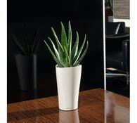 Lechuza Delta LS 15 plastový květináč samozavlažovací bílá
