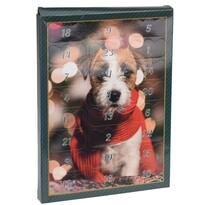 Adventný kalendár pre psov 20 x 27,5 cm, zelená