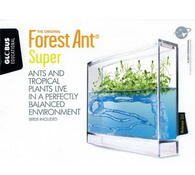 Antquarium Super Forest