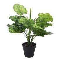 Umělá rostlina v květináči Joceline, 45 cm