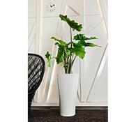 Lechuza Delta LS 30 plastový květináč samozavlažovací bílá