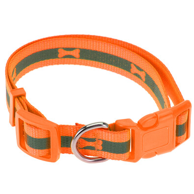 Neon narancssárga kutyanyakörv, M méret