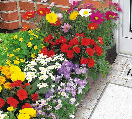 Wenko Podložka pro vypěstování záhonu se semeny 150 x 40 cm