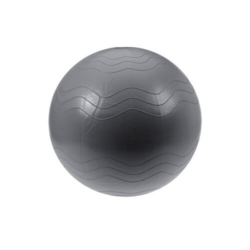 Instrument fitness XQ Max Yoga Ball diam. 65 cm, argintiu imagine 2021 e4home.ro