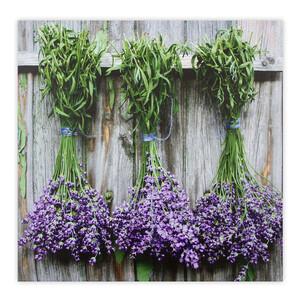 Obraz na plátně Gimont Lavender 58 x 58 cm