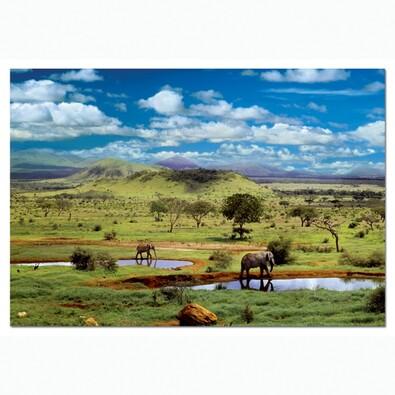 Puzzle Národní park Tsavo, Keňa