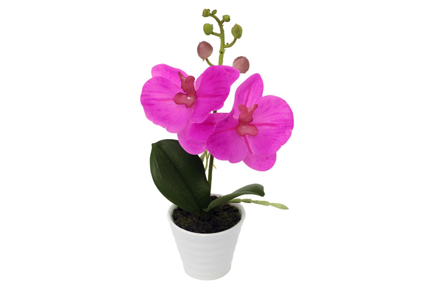Orchidea v keramickom kvetináči, tm. ružová, ORC720902