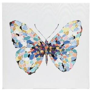 Obraz Colours Butterfly modrá, 50 x 50 cm