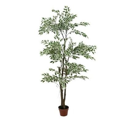 Umělý strom ficus panašovaný 182 cm