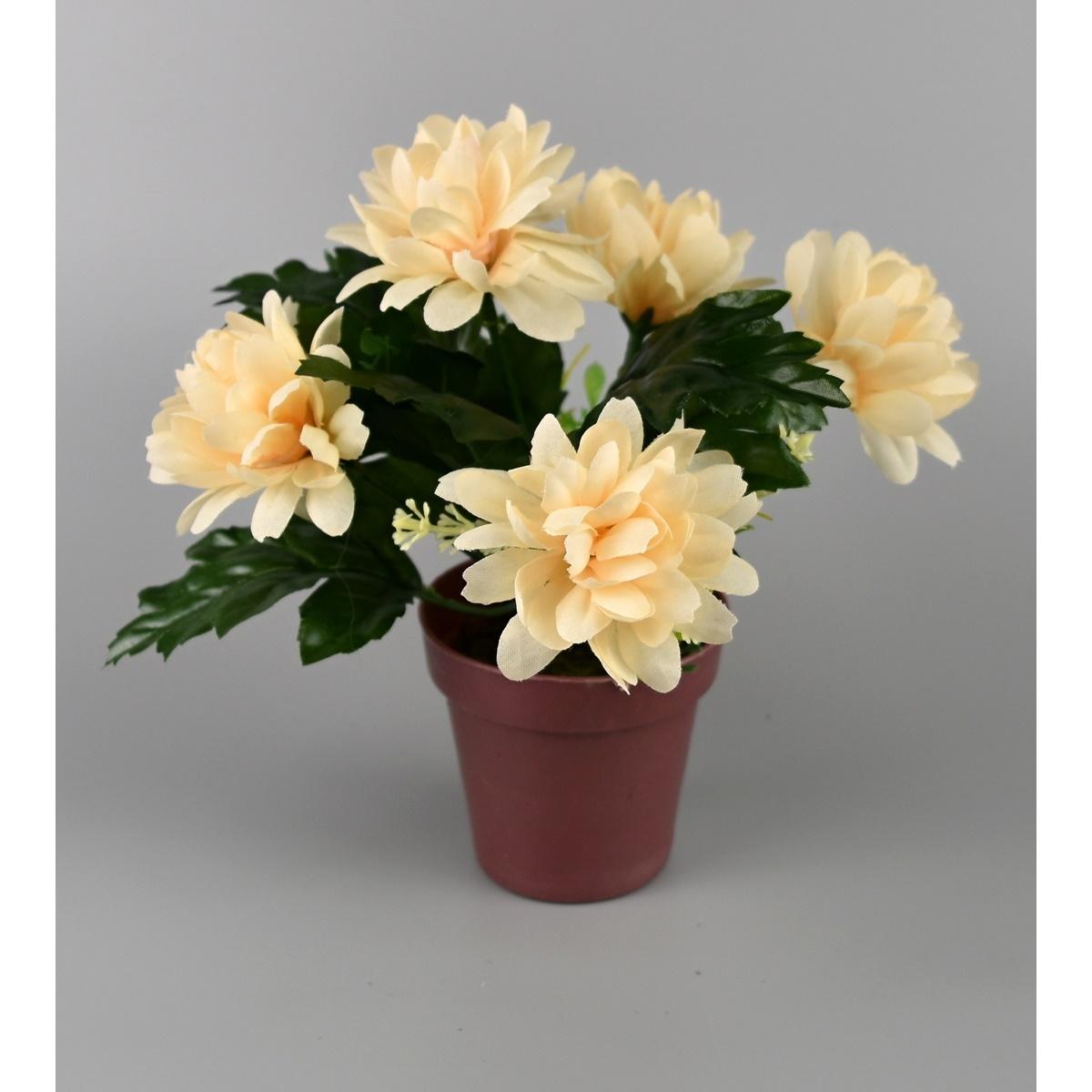 Umělá květina Chrysantéma v květináči 16 x 14 cm, krémová