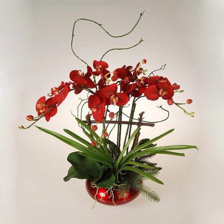 Aranžmá orchidea