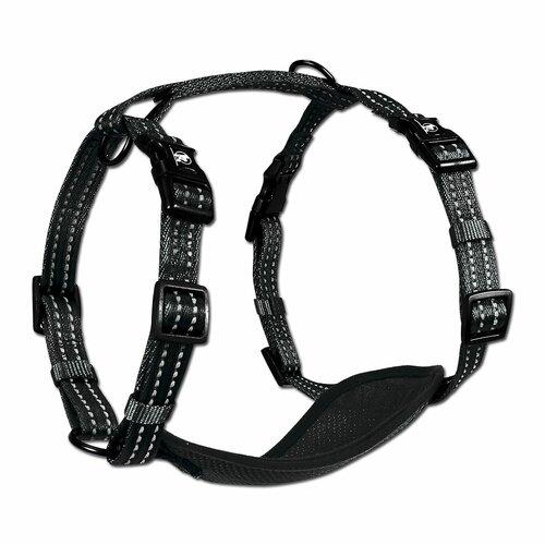 Alcott Reflexní postroj pro psy velikost M, černá