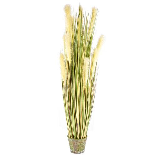 Dekorační kvetoucí tráva 120 cm
