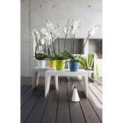 Emsa plastový květináč na orchideje Casa Brilliant , bílá 18 x 17 cm