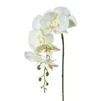 Umelá Orchidea biela, 86 cm