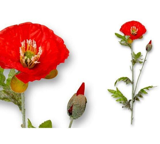 Umelá kvetina vlčí mak, list a stonka