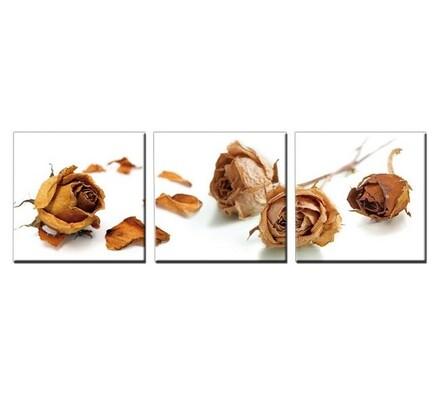 StarDeco Brown Roses třídílný obraz