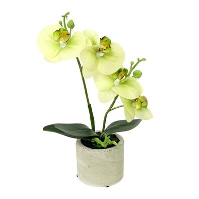 Umělá květina orchidea zelená, 26,8 cm