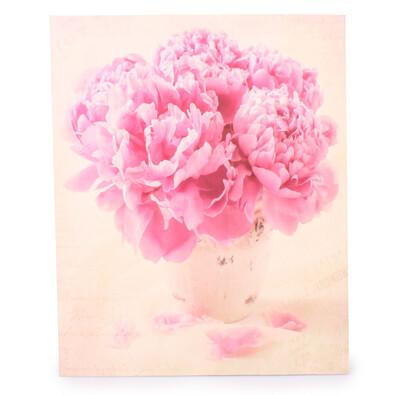 Obraz na plátně růžové pivoňky