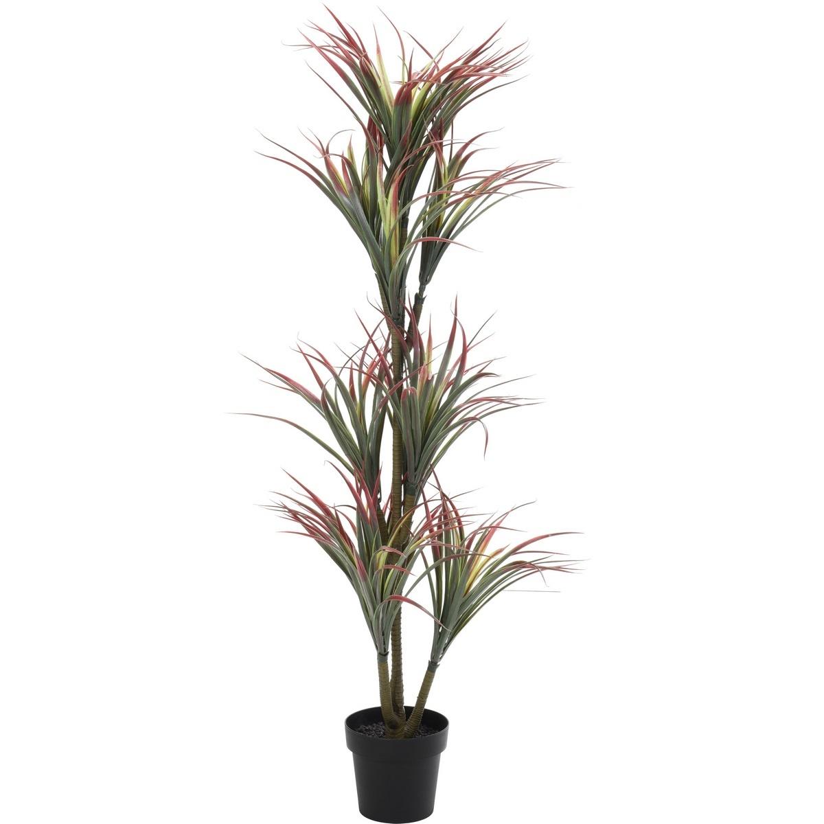Koopman Umělá rostlina v květináči Yucca červená, 150 cm