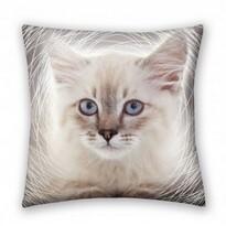 Vankúšik Animals Cat grey, 40 x 40 cm