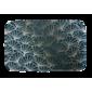 Doramex Memóriahabos szőnyeg Ginkgo zöld, 38 x 58 cm