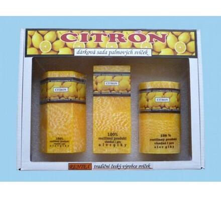 Dárková sada palmových svíček citrón, žlutá