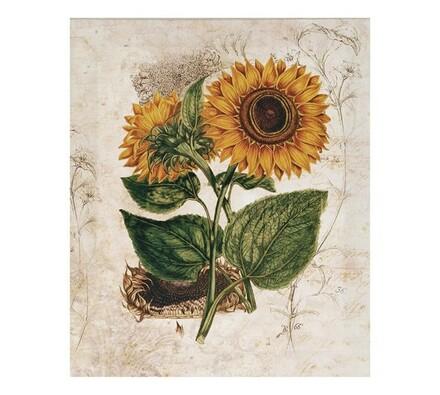 Obraz malované slunečnice, vícebarevná, 25 x 30 cm