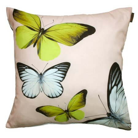 Domarex Polštářek Butterfly krémová, 40 x 40 cm
