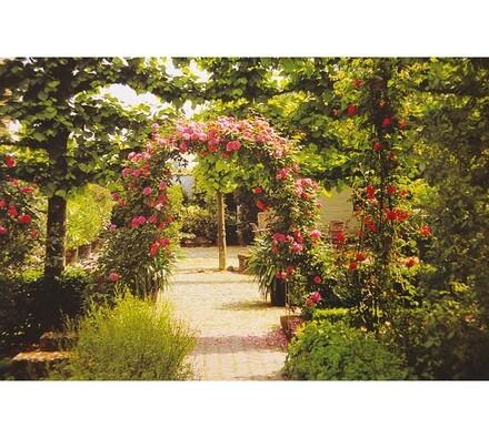 Brána na růže