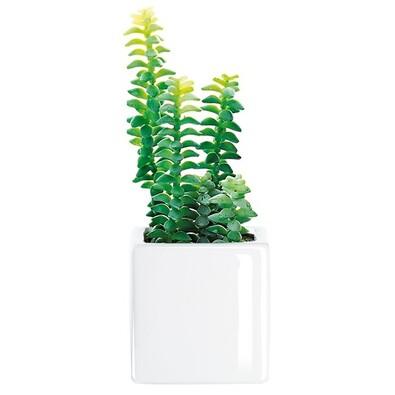ASA Selection umělá květina v květináči succulents11445