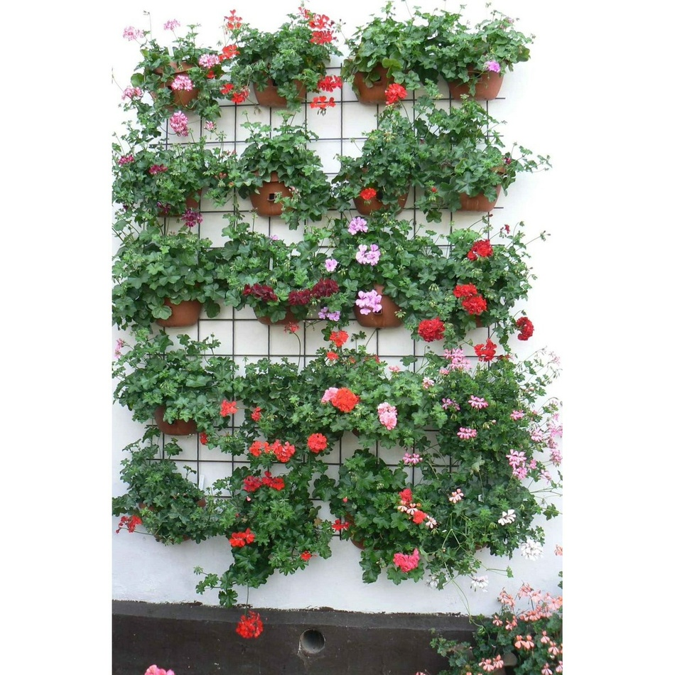 Produktové foto Plastia květináč samozavlažovací Siesta - na zeď 29 cm antracit