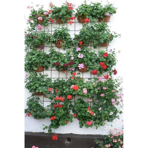 Plastia Samozavlažovací květináč na zeď Siesta hnědá 29 cm