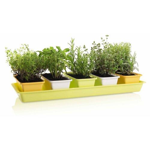 Gardenico Sada truhlíků Mini Garden 5 ks, 60 cm