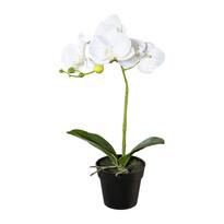 Orhidee artificială în ghiveci, alb, 37 cm