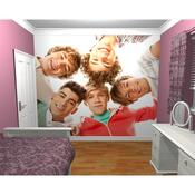 Fototapeta One direction 2, 315 x 232 cm