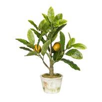 Sztuczne bonsai Drzewko cytrynowe, 40 cm