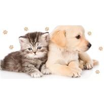 Kiscica és kiskutya törölköző, 70 x 140 cm