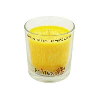Palmová vonná svíčka ve skle citrón