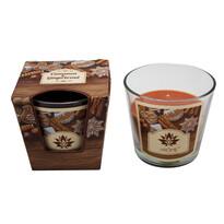 Arome Vonná svíčka Cinnamon and Gingerbread, 120 g