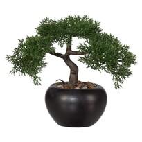 Bonsai artificial Cedru, 26 cm