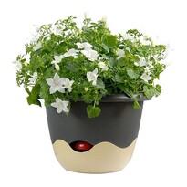 Plastia Ghiveci flori cu auto-udare Mareta gri +